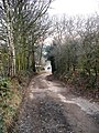 Downhill to New Hall Approach - geograph.org.uk - 1106294.jpg