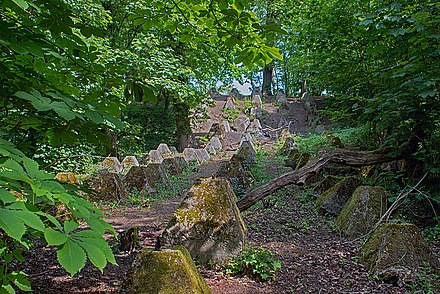"""Dragons teeth"" antitank obstacles by the River Wey Dragons teeth.jpg"