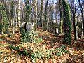 Dresden Paulifriedhof 3.JPG