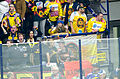EBEL Play Off 2014 Viertelfinale EC VSV vs. UPC Vienna Capitals (13161612953).jpg