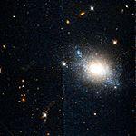 ESO 486-21 color cutout hst 13364 06 wfc3 uvis f814w f438w sci.jpg