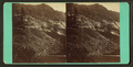 Eastern Wall, by Hinds, A. L., fl. 1870-1879.png