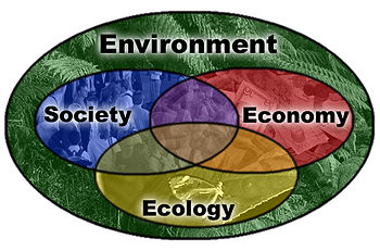 English: Diagram showing aspects of sustainabl...