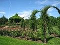 Elizabeth Park, Hartford, CT - rose garden 3.jpg