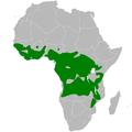 Elminia distribution map.png