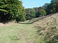 Entering the Woods - geograph.org.uk - 578802.jpg
