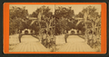 Entrance to Col. Hart's Grove opposite Palatka, Florida, from Robert N. Dennis collection of stereoscopic views 2.png
