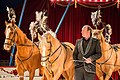 Eroni S Circus 03 08 2013 (43204338).jpeg