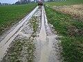 Erosion Off-site Gewässer016.JPG