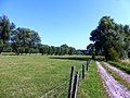Erpe-Mere Honegemstraat Honegem graslanden en knotbomenrijen - 228056 - onroerenderfgoed.jpg