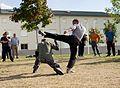 Esquive kick systema.jpg