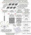 Etapy przetwarzania danych zbioru obrazów płaskich intensywności luminancji w fotostereoskopii.jpg