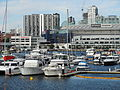 Etihad Stadium from Docklands.JPG