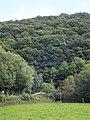 Fairby Wood and the Exe flood plain - geograph.org.uk - 2602118.jpg