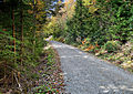 Fall-wilderness-road - Virginia - ForestWander.jpg