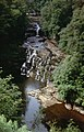 Falls of Clyde - geograph.org.uk - 1417569.jpg