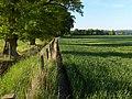 Farmland, Dripend - geograph.org.uk - 183842.jpg