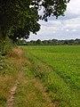 Farmland, Prestwood - geograph.org.uk - 935965.jpg