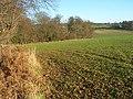 Farmland and woodland edge, Nettlebed - geograph.org.uk - 1270522.jpg