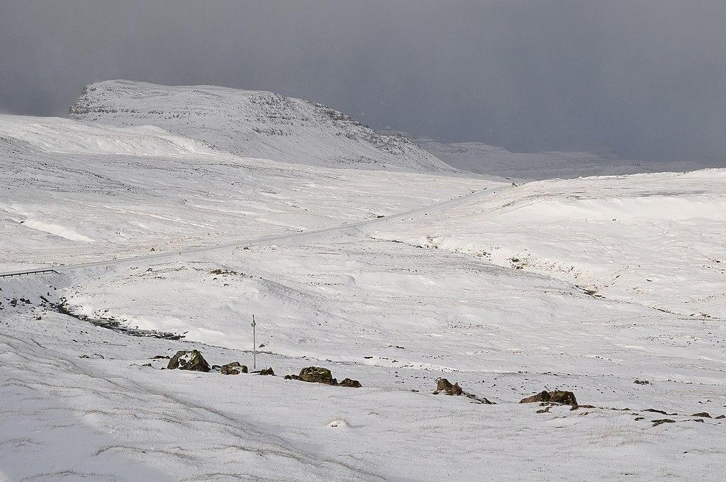 Faroe Islands North East Arctic Cold Water Prawn