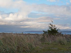 Fay Bainbridge Park, Washington, USA.JPG