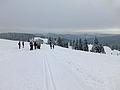 Feldberg in winter (5).jpg