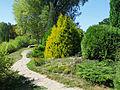 Feofania park10.JPG