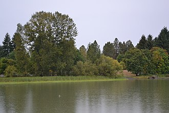 Fern Ridge Wildlife Area - Image: Fern Ridge Wildlife Viewing Area (Veneta, Oregon)