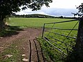 Field near Cranbrook - geograph.org.uk - 1478159.jpg