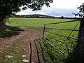 Field near Cranbrook - geograph.org.uk - 1478159.jpg