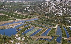 Fields near Metkovic 4