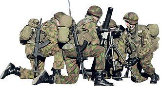 Finnish Army - Army mortar squad
