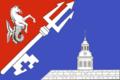 Flag of Gavan (St Petersburg).png