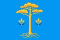 Flag of Muravyovskoe (Arkhangelsk oblast).png