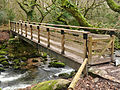 Footbridge above Shaugh Bridge.jpg