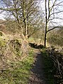 Footpath at Park Gate East, Southowram - geograph.org.uk - 398077.jpg