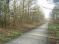 Footpath in Oversley Wood - geograph.org.uk - 331936.jpg