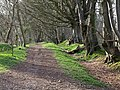 Footpath on Core Hill - geograph.org.uk - 753110.jpg