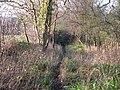 Footpath to Pearcelands - geograph.org.uk - 1623012.jpg