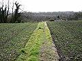 Footpath to River Hill Farm - geograph.org.uk - 621956.jpg
