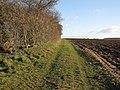 Footpath to Weston Colville - geograph.org.uk - 1637389.jpg