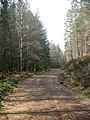 Forestry track from Tomich to Loch Beinn a Mheadhoin - geograph.org.uk - 169365.jpg