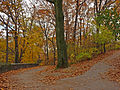 Fort Tryon Park- Fall 2013.jpg