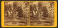 Fountain, Fairmount Park, Philadelphia, from Robert N. Dennis collection of stereoscopic views 4.png