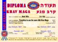 Franchise to use the name AIki Krav Maga-small.png