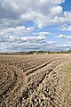 Freshly plowed fields - panoramio.jpg