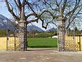 Frohnburg - Ausblick zur Hellbrunner Allee.jpg
