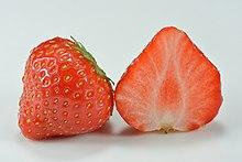 https://upload.wikimedia.org/wikipedia/commons/thumb/e/ea/Garden_strawberry_%28Fragaria_%C3%97_ananassa%29.jpg/220px-Garden_strawberry_%28Fragaria_%C3%97_ananassa%29.jpg