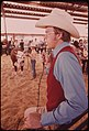 Garfield County Fair. Judging Livestock Raised by Youngsters in the 4-H Program, 09-1973 (3815034227).jpg