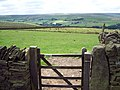Gate, Shackleton Knoll - geograph.org.uk - 32441.jpg